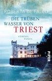 Die trüben Wasser von Triest / Commissario Benussi Bd.1