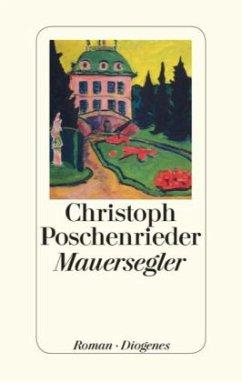 Mauersegler (Restexemplar) - Poschenrieder, Christoph