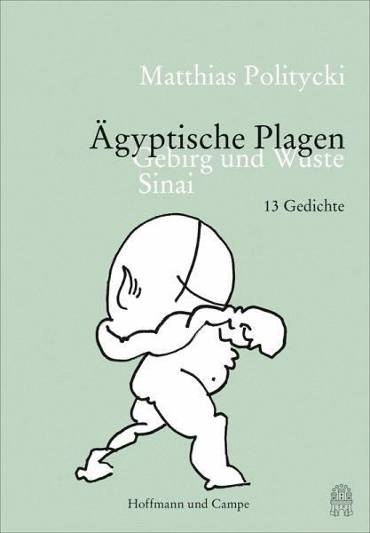 Ägyptische Plagen (eBook, ePUB) - Politycki, Matthias