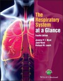 The Respiratory System at a Glance