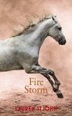 Fire Storm / One Dollar Horse Bd.3