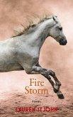 Fire Storm / One Dollar Horse Bd.3