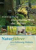 Die geheime Welt der Wälder