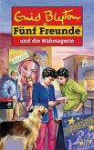 Fünf Freunde und die Wahrsagerin (eBook, ePUB)