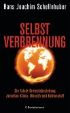 Selbstverbrennung (eBook, ePUB)