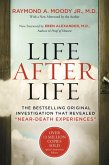 Life After Life (eBook, ePUB)