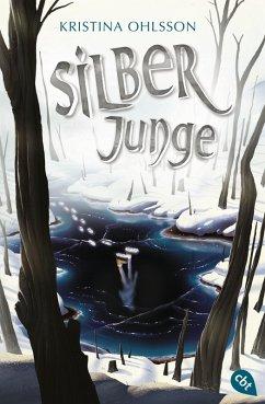 Silberjunge / Glaskinder Bd.2 (eBook, ePUB) - Ohlsson, Kristina
