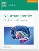 Neuroanatomie