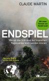 Endspiel (eBook, ePUB)