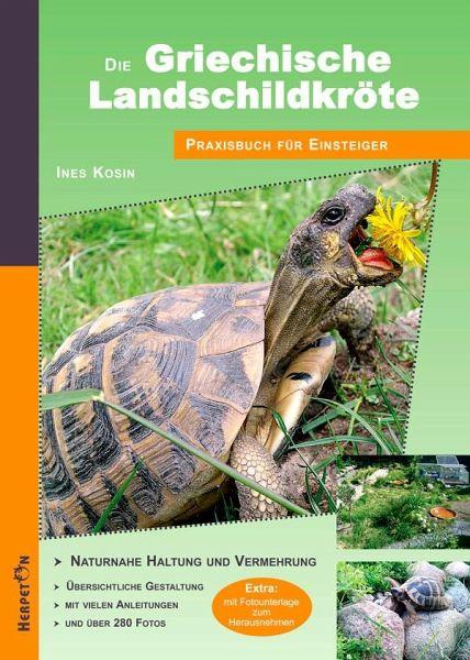 Die Griechische Landschildkröte - Kosin, Ines