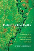 Defining the Delta: Multidisciplinary Perspectives on the Lower Mississippi River Delta