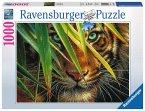 Ravensburger 19486 - Geheimnisvoller Tiger, 1000 Teile