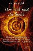 Der Tod und die Seele (eBook, ePUB)