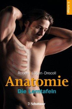 Anatomie - Rohen, Johannes W.;Lütjen-Drecoll, Elke
