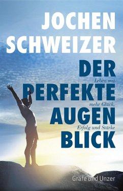 Der perfekte Augenblick (eBook, ePUB) - Schweizer, Jochen