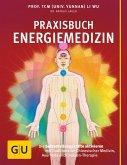 Praxisbuch Energiemedizin (eBook, ePUB)