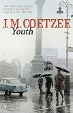 Youth (eBook, ePUB)