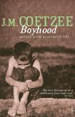 Boyhood (eBook, ePUB)