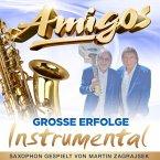 Große Erfolge-Instrumental