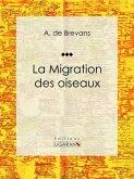 La migration des oiseaux (eBook, ePUB)