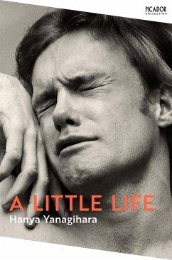 A Little Life (eBook, ePUB) - Yanagihara, Hanya