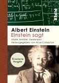 Einstein sagt (eBook, ePUB)