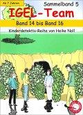 IGEL-Team Sammelband 5 (eBook, ePUB)