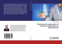 Cloning and expression of human insulin gene in baking yeast