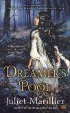 Dreamer's Pool (eBook, ePUB)