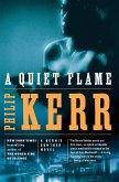 A Quiet Flame (eBook, ePUB)