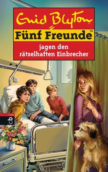 Fünf Freunde jagen den rätselhaften Einbrecher (eBook, ePUB)