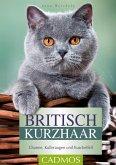 Britisch Kurzhaar (eBook, ePUB)