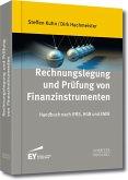 Rechnungslegung und Prüfung von Finanzinstrumenten (eBook, PDF)