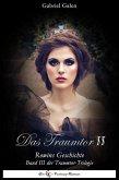 Das Traumtor II (eBook, ePUB)