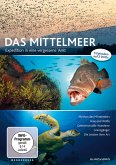 Expedition Mittelmeer - Expedition in eine vergessene Welt (2 Discs)