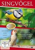 Singvögel - Eine faszinierenden Dokumentation