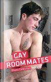 Gay RoomMates - Sexy Boys privat Vol.1 (eBook, ePUB)