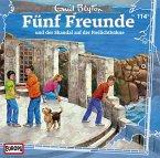 Fünf Freunde und der Skandal auf der Freilichtbühne / Fünf Freunde Bd.114 (1 Audio-CD)