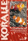 Clownfische (eBook, ePUB)