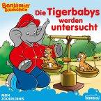 Benjamin Blümchen - Die Tigerbabys werden untersucht (eBook, ePUB)