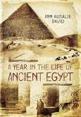 Year in the Life of Ancient Egypt (eBook, PDF)