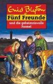 Fünf Freunde und die geheimnisvolle Formel / Fünf Freunde Bd.25 (Mängelexemplar)