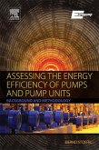 Assessing the Energy Efficiency of Pumps and Pump Units (eBook, ePUB)