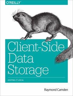 Client-Side Data Storage