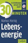 30 Minuten Lebensenergie (eBook, PDF)