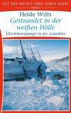 Gestrandet in der weißen Hölle (eBook, ePUB)
