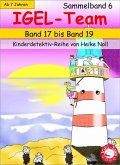 IGEL-Team Sammelband 6 (eBook, ePUB)