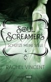 Schütze meine Seele / Soul Screamers Bd.4 (eBook, ePUB)