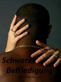 Schwarze Befriedigung (eBook, ePUB)