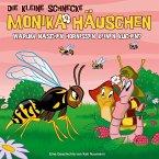 Warum naschen Hornissen keinen Kuchen?, 1 Audio-CD / Die kleine Schnecke, Monika Häuschen, Audio-CDs Folge.43